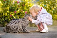 9 Pet Safety Tips for Kids