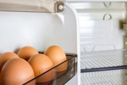 The food shelf life of eggs is 3 weeks.