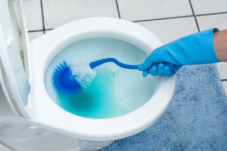 Sanitize the bowl with a thorough summer cleaning