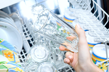 Dirty dishes should be placed in the dishwasher.
