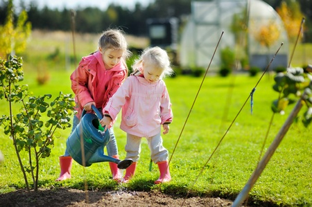 Backyard gardening with kids.