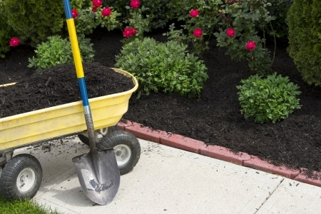 Mulching is a garden chore for September