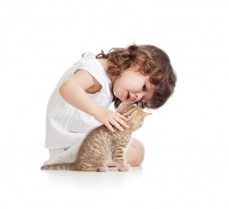Family Pet Tips